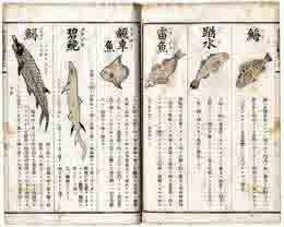 古書 買取 大阪の黒崎書店は、日本の古典籍・和本を出張買取いたします